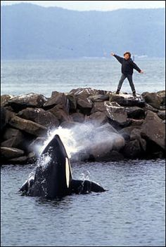 Free Willy - I was in love with this movie as a child.