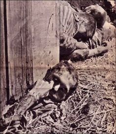 In 1945, SS and Luftwaffe troops herded more than 1,000 prisoners into a barn at Gardelegen, Germany, and set it on fire...