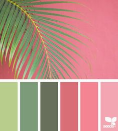 newest pics summer color palette colour schemes popular me : What an incredible day! COLOURlovers color palette software is bringing you our best picks of color palettes that'll take your breath away. Color Schemes Colour Palettes, Paint Color Schemes, Living Room Color Schemes, Colour Pallette, Color Combinations, Summer Colour Palette, Colour Trends, Green Pallete, Paint Colors