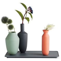 Hallgeir Homstvedt Balance Set, Three Vases on Rectangular Base ($127) ❤ liked on Polyvore featuring home, home decor, decor, flowers, plants, fillers, rectangle tray, personalized tray, personalized home decor and rectangular tray