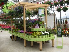 Wood Display Products - Highlighters, Octagonal and Island Displays - ABENCH - Wide Island Displays - Bench Systems Garden Center Displays, Garden Centre, Greenhouse Ideas, Greenhouse Gardening, Wood Display, Display Ideas, Acacia, Balcony Hanging Plants, Point Of Purchase