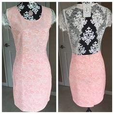 """Pink & White Lace Dress Brand new. Lace and cap sleeves.  No damage, pulls, tears or marks.  Measures 34"""" long.  Size medium. Fits great on dress form that measures 35-26-36.  Fabric polyester, cotton, spandex. Has some stretch. Moon Dresses"""