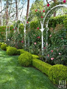 Graceful garden arch trellises stand as sculptural structures that bring beauty and function to landscapes of all sizes. Consider a curved trellis for your backyard, patio, garden, or walkway.
