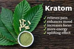 They Couldn't Ban Kratom, so Now the Feds Are Trying to Stop the Source Opiate Withdrawal, Withdrawal Symptoms, Headache Relief, Pain Relief, Mitragyna Speciosa, Vape Smoke, Mood Enhancers, Home Remedies