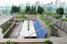Underutilized rooftop pool converted into a farm-to-table garden. NY.