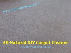 DIY All-Natural Carpet Cleaner