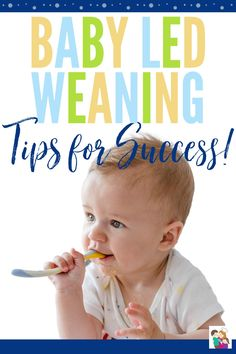 If you are thinking about starting baby led weaning with your baby it can seem a little overwhelming, but with these baby led weaning tips you will be set up for a successful baby led feeding adventure! #blw #babyledweaning #baby #everythingbaby #parenting Weaning Toddler, Baby Led Weaning, Baby Tips, Baby Hacks, Everything Baby, Baby Play, Baby Sleep, Baby Care, Toddlers