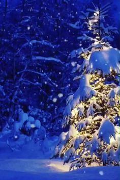 ❄ 20 Magical, Snowy, Animated Christmas Scenes To Start Getting You In The Holiday Mood Holiday Mood, Christmas Mood, Noel Christmas, Christmas Lights, Vintage Christmas, Christmas Decorations, Winter Christmas Scenes, Christmas Videos, Christmas Music