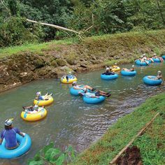 mountain tubing in hawaii... yes please
