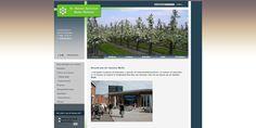 Voor stichting welzijn Neder Betuwe bouwde van Eck & Oosterink de nieuwe website.