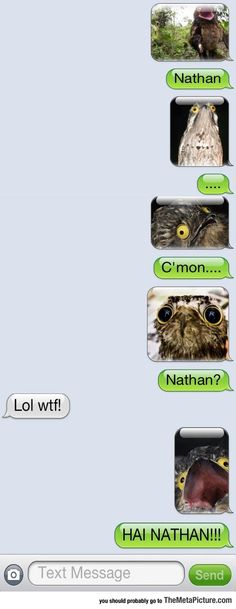 Nathan Has Some Really Creepy Friends