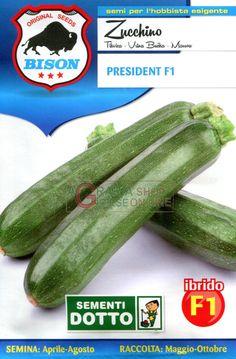 BISON SEMI DI ZUCCHINO PRESIDENT IBRIDO F1 https://www.chiaradecaria.it/it/semi-di-ortaggi/1800-bison-semi-di-zucchino-president-ibrido-f1-8006555074451.html