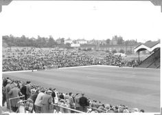 The Valley, Charlton: Early Sixties Charlton Athletic, Football Stadiums, Terrace, Dolores Park, Places, Wood, Sports, Photos, Travel