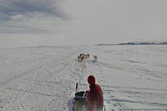 dog sledding iqaluit nunavut