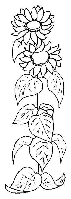 Coloriage Fleurs et plantes !