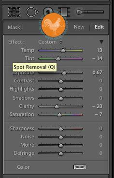 Lightroom Tutorial: Start to Finish Edit