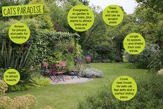 Cat's Paradise Garden