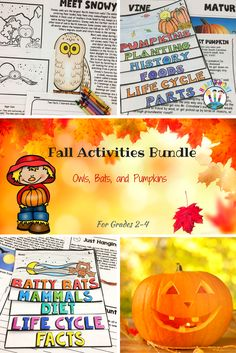 This BUNDLlE is perfect for fall! Students will love the many activities in this bundle as they learn all about pumpkins, owls, and bats! This is three separate resources rolled into one huge pack with 160 pages in all!!
