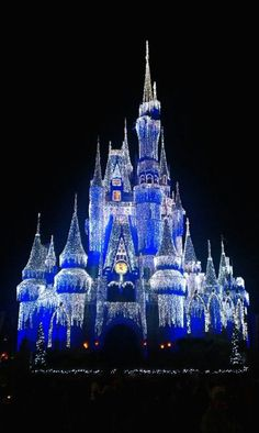 Disney World in the winter // Disney at Christmas was so romantic...