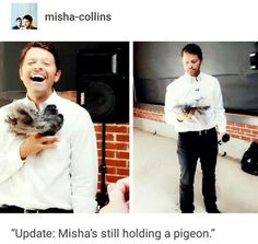 misha collins being the bane of my fucking existence