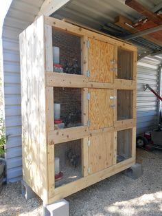 Pour l'été, les poulet ou les cailles en production ou pour séparer les coqs des femelles