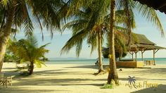 Beautiful white beach of Sri Thanu on the west coast of Ko Phangan    #srithanu #kophangan #beachpic
