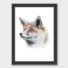 Fox Art Print by Olivia Bezett NZ Art Prints, Art Framing Design Prints, Posters & NZ Design Gifts | endemicworld
