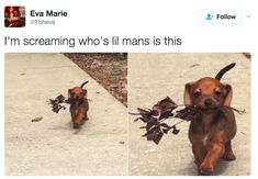 This lil man: | 22 Pure And Kind Posts That Will Soothe Your Troubled Soul