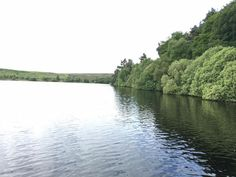 - Lockwood Beck Trout Fishery Facebook