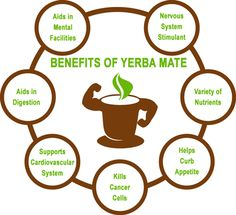 Seven Benefits of Yerba Mate
