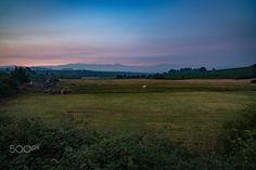 On the trail at sunrise - Camino de Santiago 2015
