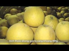 http://banbuoidienngon.blogspot.com/2015/12/gia-mua-ban-buoi-dien-tet-tai-Ha-Noi.html