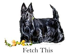 Scottish Terrier Holiday Dog