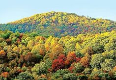Western Pa. on track for a vibrant fall