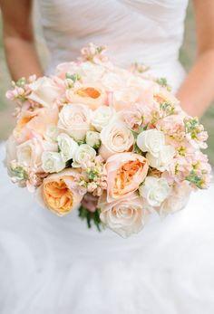 blush, pink and apricot <3 love!