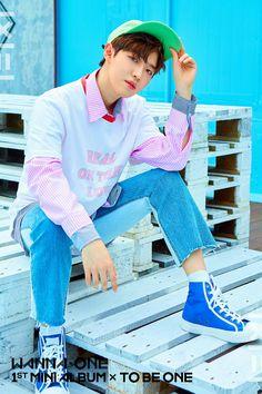 Kim Jaehwan | Wanna One 1st Mini Album - To Be One