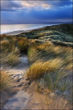 don't mention it - Harlech Dunes Landscape Photos, Landscape Art, Landscape Photography, Nature Photography, Snowdonia National Park, Beach Scenes, Ocean Beach, Belle Photo, Beautiful Beaches