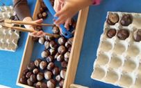 Avec des marrons, en maternelle Maternailes OK Minimalist Homeschool, Art For Kids, Crafts For Kids, Kindergarten Projects, Petite Section, Montessori Baby, Homemade Baby Foods, Autumn Crafts, Occupational Therapy