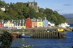 Tobermory, Isle of Mull, Scotland, UK Fairy Tales, Houses, Homes, Fairytale, Fairytail, House, Home, Computer Case, Fairies