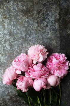 Peonies by Emily Quinton