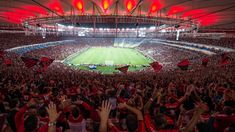 Find the best Flamengo Wallpapers on GetWallpapers. We have background pictures for you! Original Wallpaper, Hd Wallpaper, Wallpapers, Background Pictures, Crowd, Images, Sports, Galo, 1080p