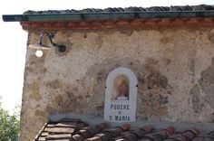 Podere Santa Maria, Val di Merse