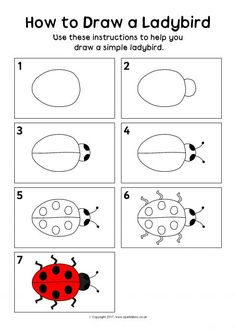 Classroom İdeas 334955291038738009 - How to Draw a Ladybird Instructions Sheet – SparkleBox Source by mymdb