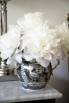 White Peonies | Les Fleurs