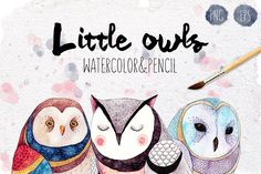 Three little owls by Maria Sem Watercolors on @creativemarket