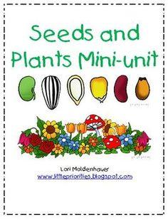 Seeds and Plants Mini-unit