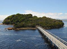 Forrest Island, West Coast, Tasmania
