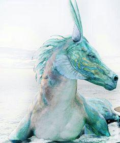 Parece un dragón marino