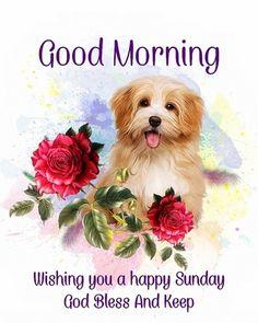 Blessed Sunday Morning, Sunday Wishes, Good Morning Greetings, Good Morning Wishes, Sunday Messages, Morning Blessings, Happy Sunday Images, Happy Sunday Quotes, Good Morning Music