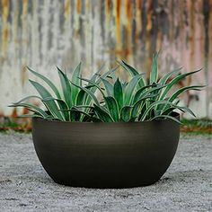 We Are A Whole Manufacturer Of Aluminum Planters
